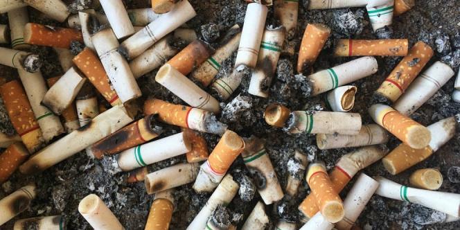 puntung rokok yang dihimpunkan