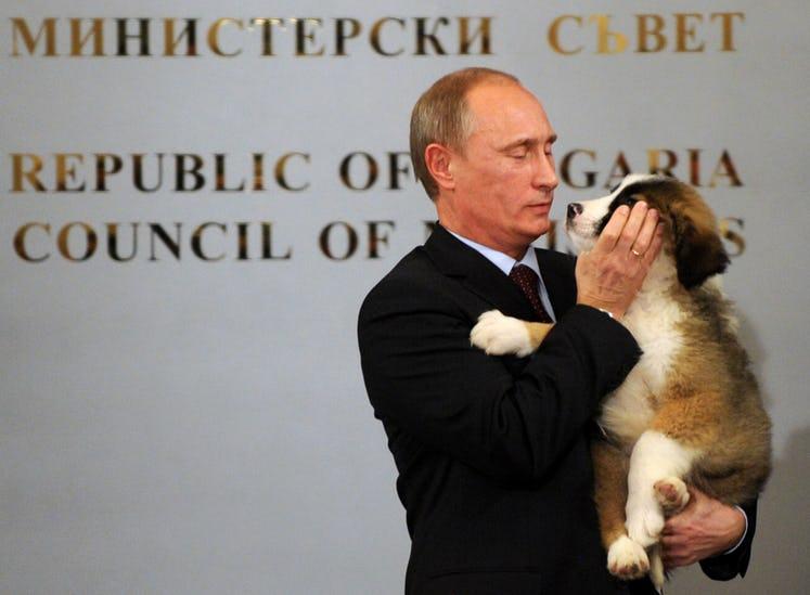 putin dan anjing
