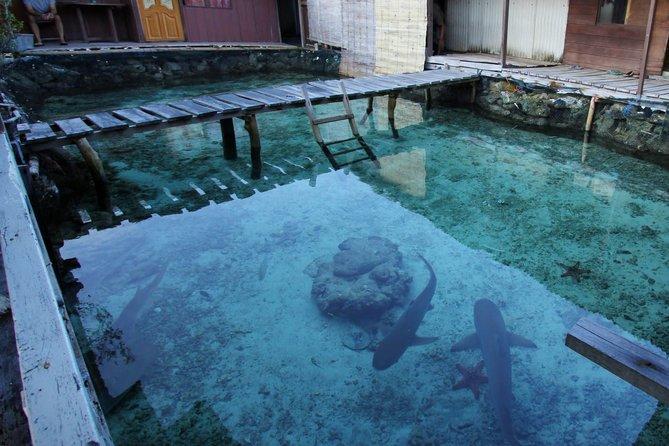 resort terapung seakan akan maldives di wisma apung