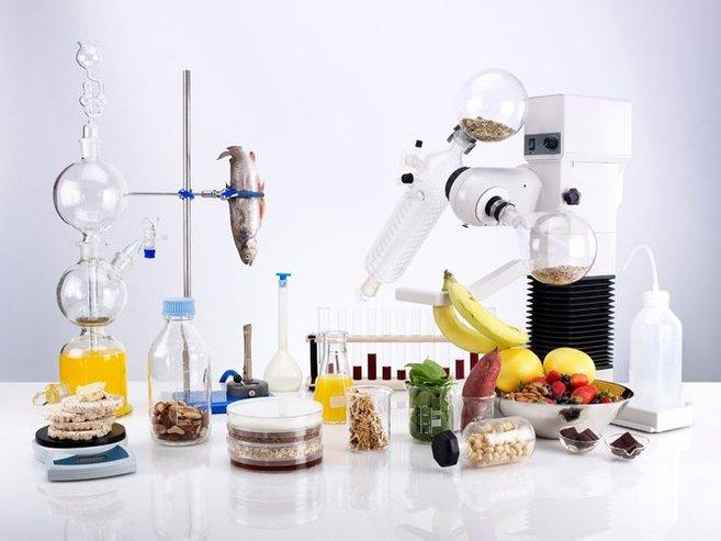 sains pemakanan