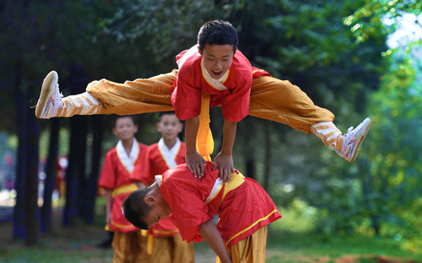 shaolin kung fu hoye