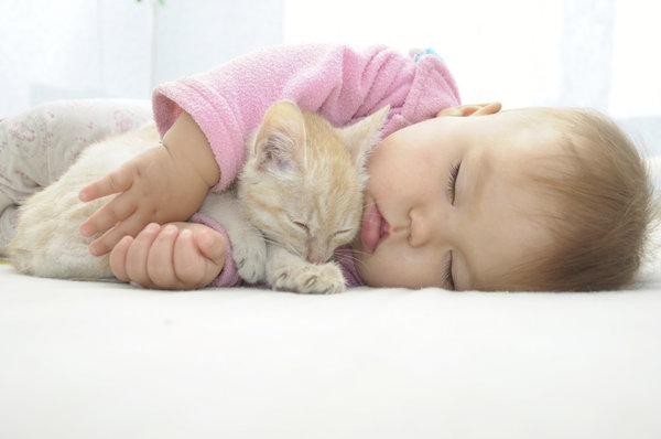 si kecil tidur nyenyak bersama haiwan peliharaan pet mereka 1