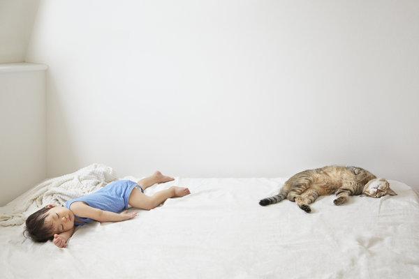 si kecil tidur nyenyak bersama haiwan peliharaan pet mereka 4