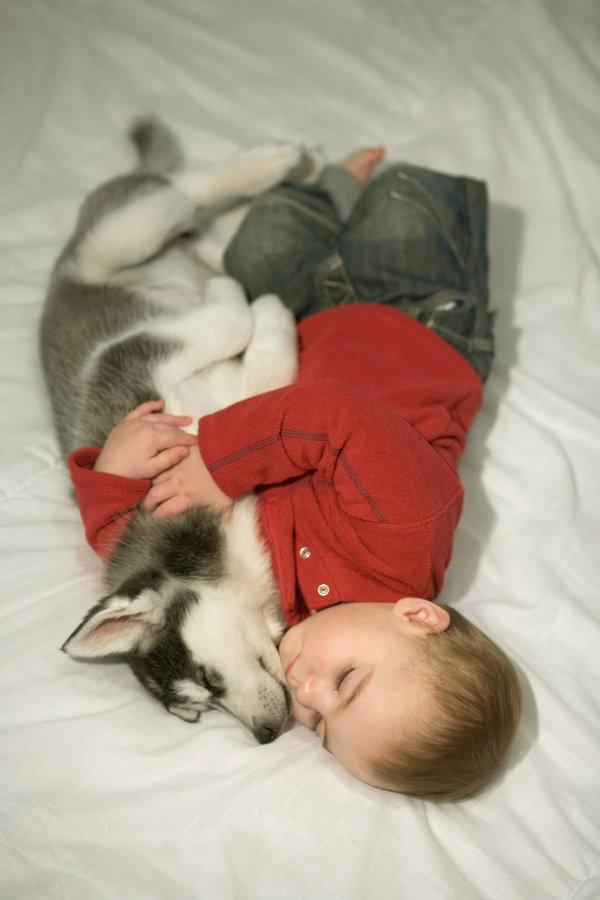 si kecil tidur nyenyak bersama haiwan peliharaan pet mereka 6