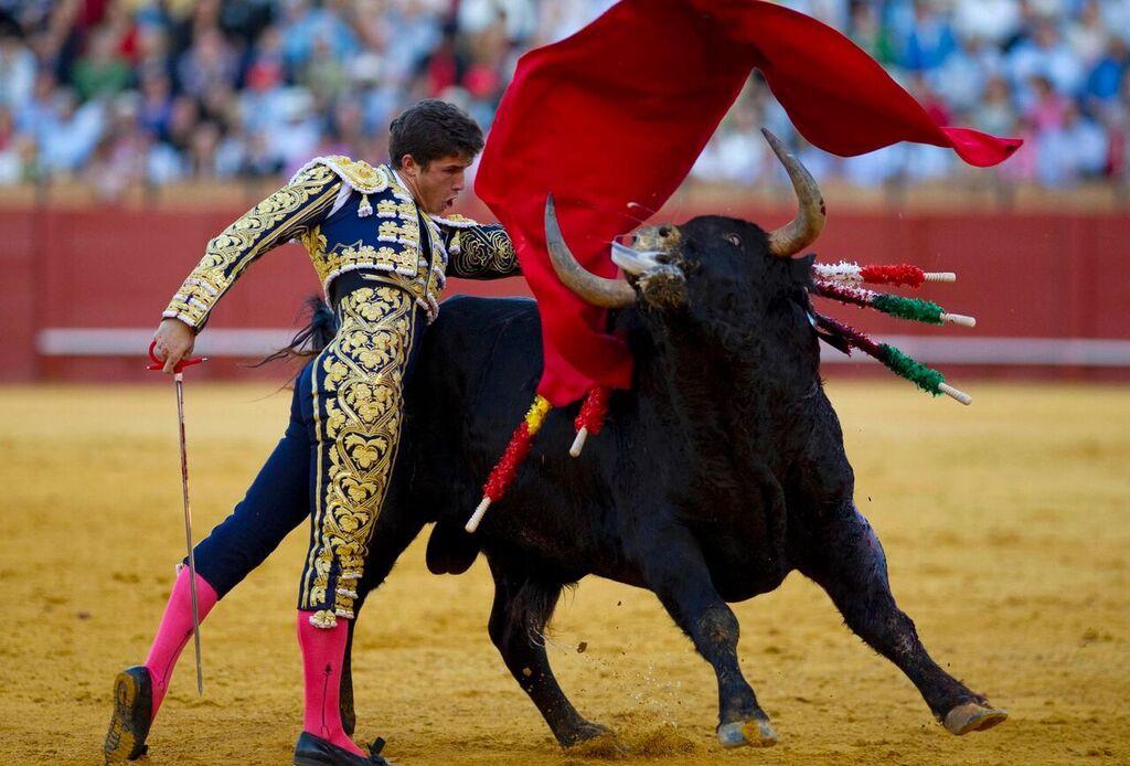 sukan matador