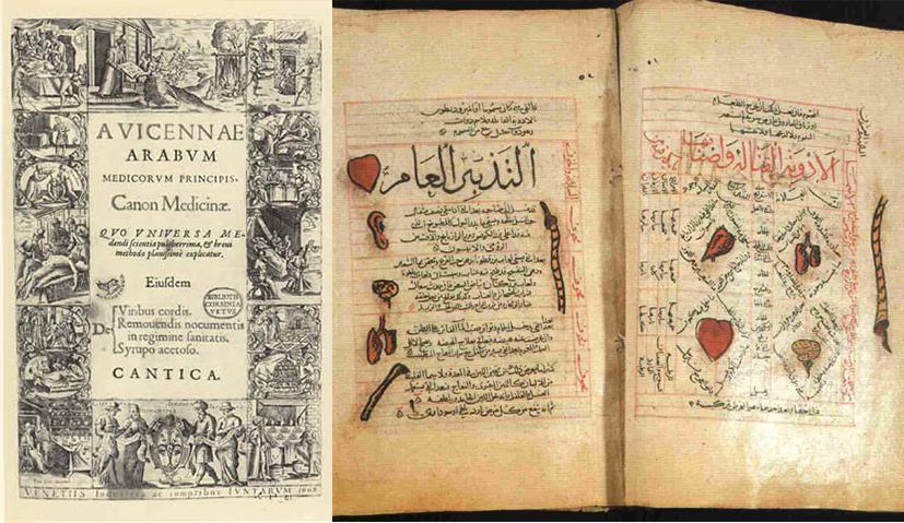 sumbangan ibnu sina avicenna the canon of medicine
