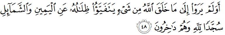 surah an nahl ayat 48