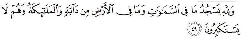 surah an nahl ayat 49