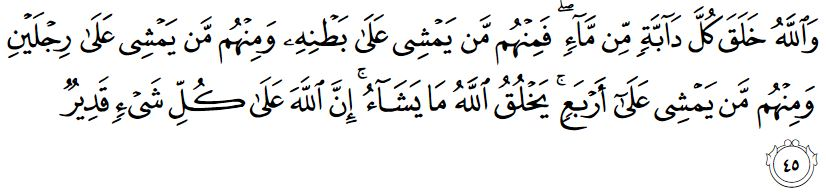 surah an nur ayat 45
