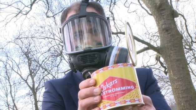 surstr mming makanan paling busuk dalam dunia sweden meatball ikea sedap 238