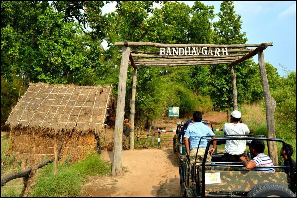 taman negara bandhavgarh india