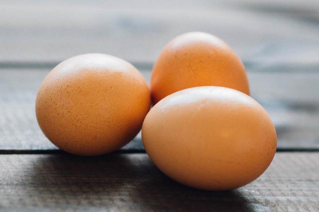 telur 941