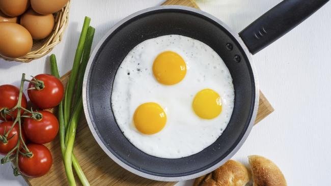 telur ayam yang selalu kita makan