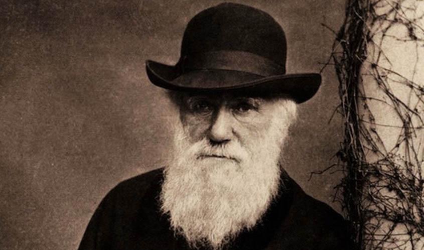 teori charles darwin tentang evolusi manusia 106