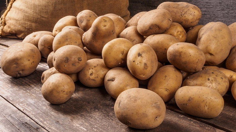 ubi kentang poland