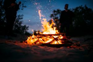 unggun api punca kebakaran hutan