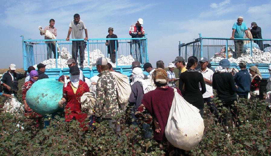 uzbekistan negara paling tinggi populasi perhambaan moden