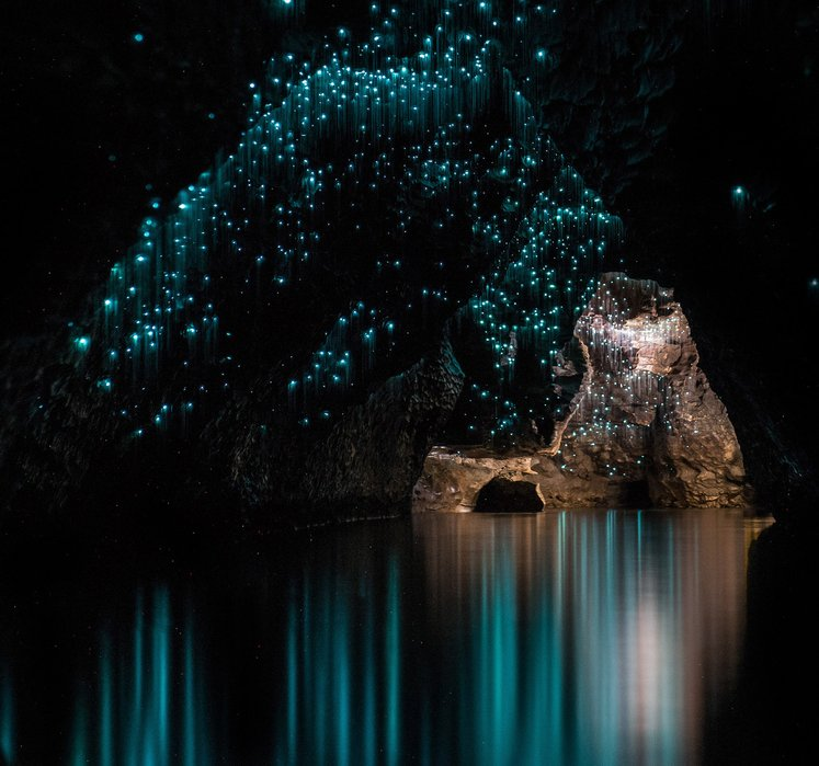 waitomo caves tempat alien