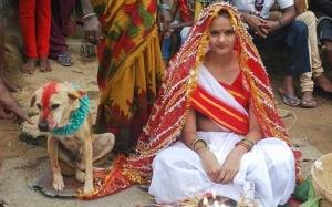 Pelik! 5 Manusia ini berkahwin dengan haiwan atas dasar cinta