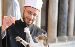 Kisah Syeikh Usamah Al Azhari bersama seekor kucing