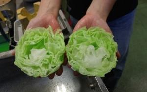 Trend makanan palsu di China khabarnya dah mula sampai Malaysia. ...