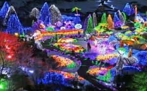 Sekiranya anda ke Korea, Anda patut pergi ke 'The Garden of Morni...