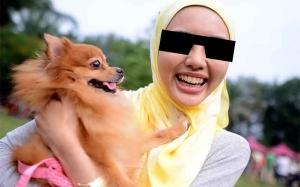 Mengapa Ada Sesetengah Orang Islam Mahu Sangat Membela Anjing?