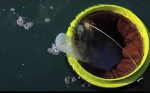 Teknologi ringkas ini mungkin mampu selesaikan masalah pencemaran...