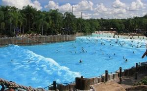 Tahukah anda berapa banyak air kencing dalam kolam renang?