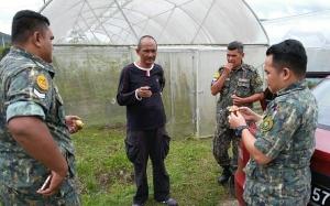 Ramai tak tahu pokok tin boleh ditanam di Malaysia dan ada yang m...