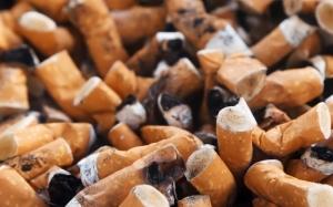 Tips Ini Boleh Membantu Anda Menghilangkan Kesan Nikotin Dari Bad...